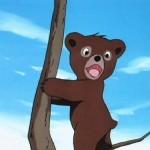 bouba-le-petit-ourson-003