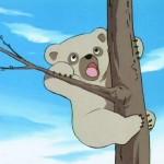 bouba-le-petit-ourson-004