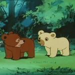bouba-le-petit-ourson-007